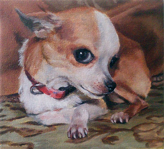 art, painting, portrait, animal, chihuahua, gil, rocha
