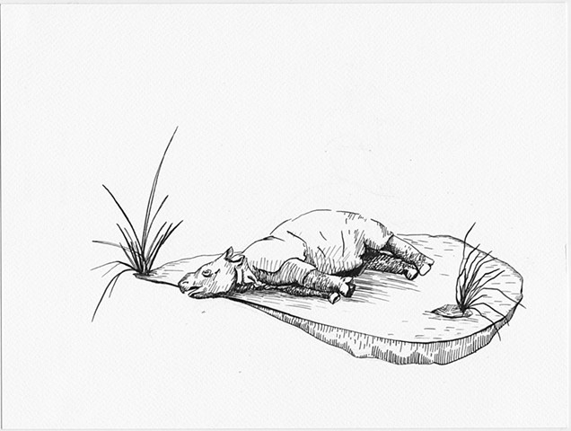 Study for Java Toile (Hunted Baby Rhino, 1904)