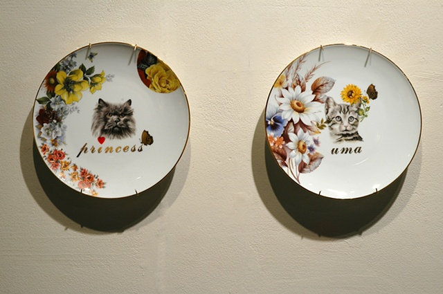pussy plates, detail