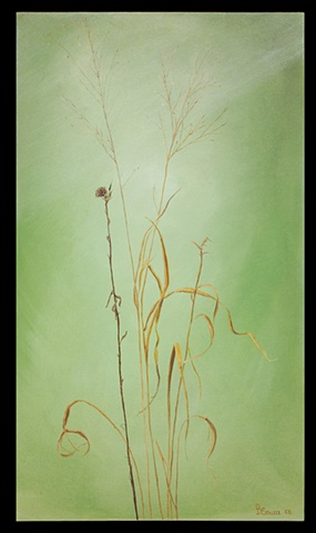 Oil on canvas/ fall grasses and weeds