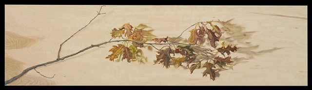 Oil on oak panel/ oak branch with shadows