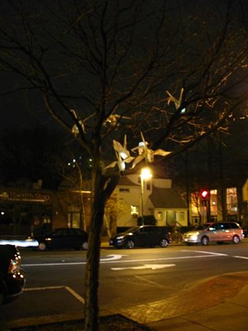 Hannah Verlin Figments at night
