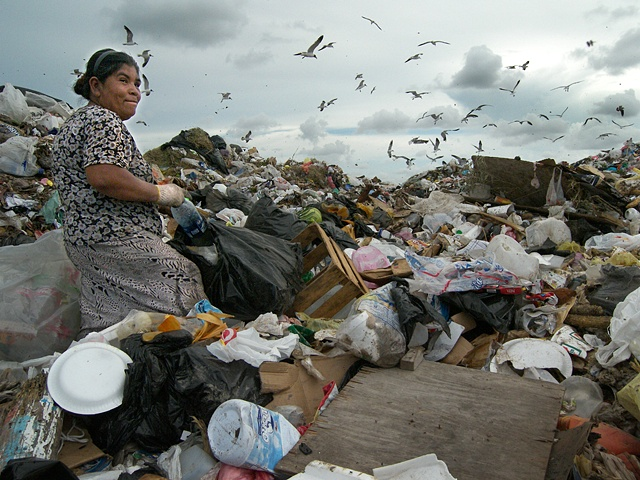 On the trash mound