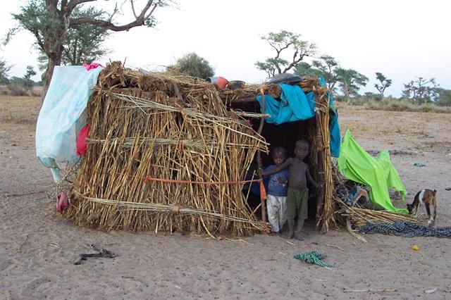 Tiny nomad hut