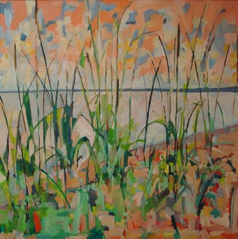 Beach Grass, Evening