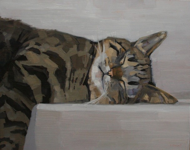 cat, sleeping cat, cat art, oil painting, patti vincent art, patti vincent