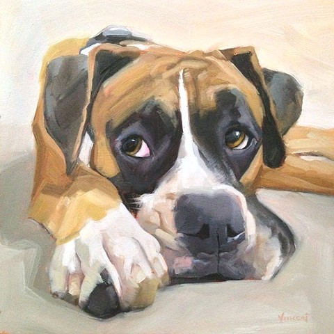 pet portrait, commission, dog painting, patti vincent art, dog
