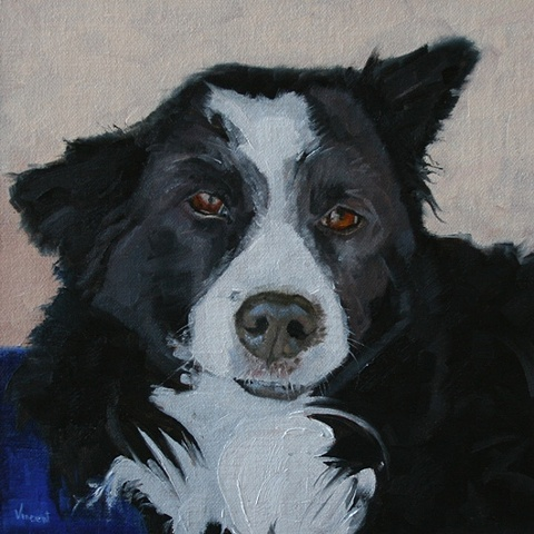 pet portrait commission, dog painting, oil painting, border collie, dog