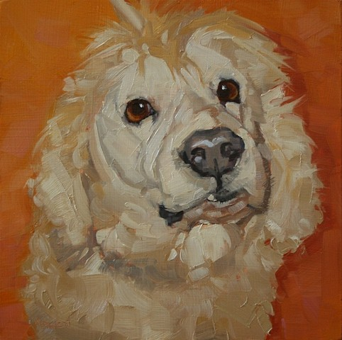 dog painting oil painting pet portrait patti vincent art
