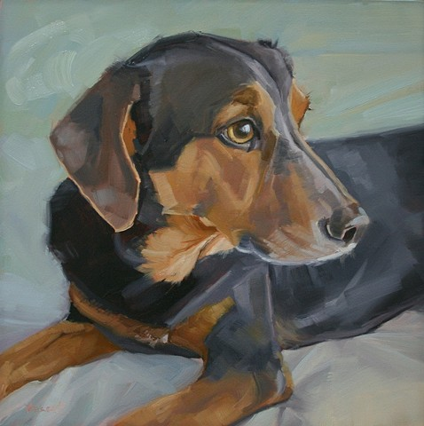 pet portrait, dog, dog painting, oil painting, pet portrait commission