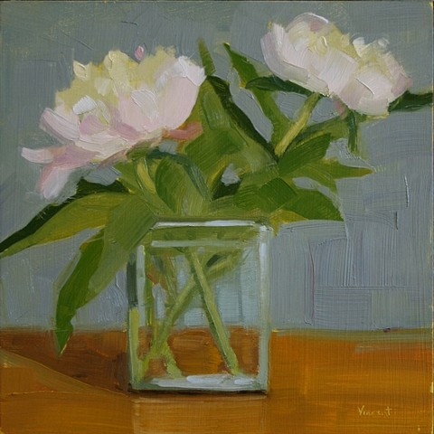 peony oil painting daily painting patti vincent