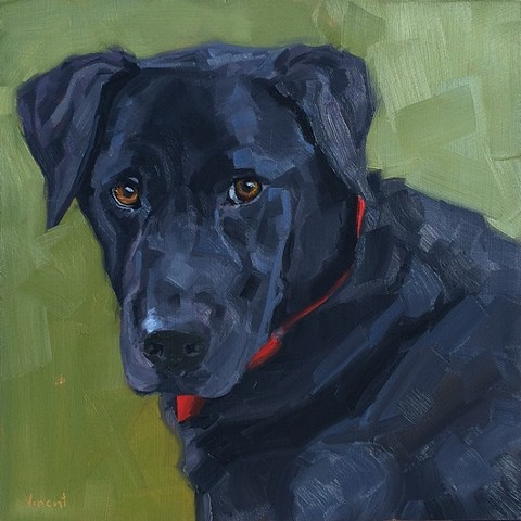 black lab, black lab painting, dog art, black lab oil painting, patti vincent, art, studio