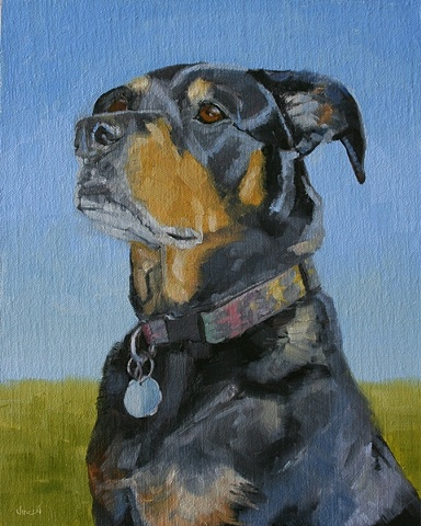 dog, dog painting, oil painting, pet portrait, commission, rottweiler,
