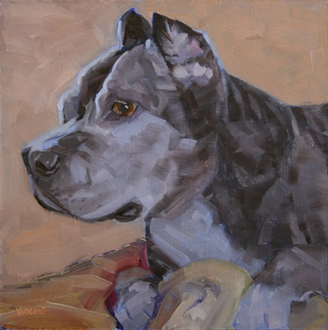 pet portrait, dog, oil painting, dog painting, pit bull