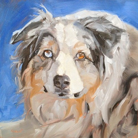 pet portrait commission oil painting patti vincent dog