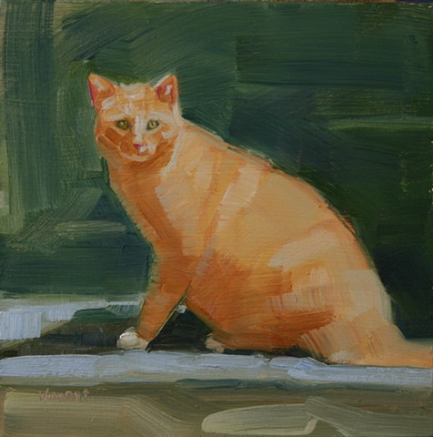 cat oil painting patti vincent daily painting