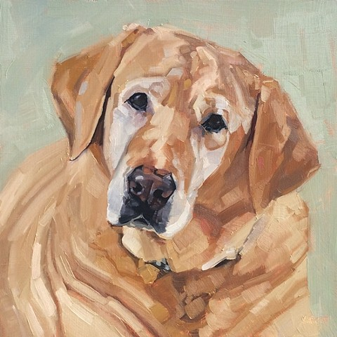 yellow lab art, yellow lab painting, yellow laborador, patti vincent, dog art, dog painting, oil painting