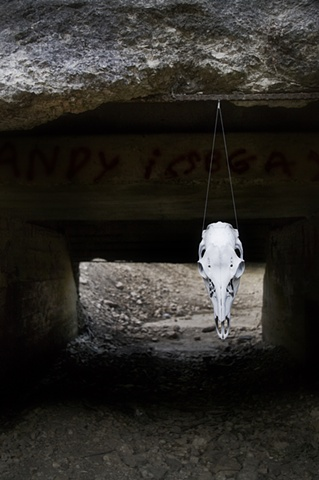 Skull in Entryway