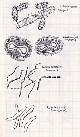 Sketch of bacteria/viruses
