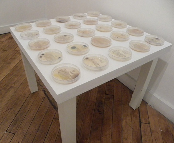 Cultured Texts [Brooklyn Artists Gym Installation view]