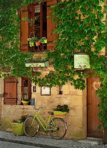 La Bonbonniere, Bergerac France, with lime green colorful bike and baskets, vines covering the house