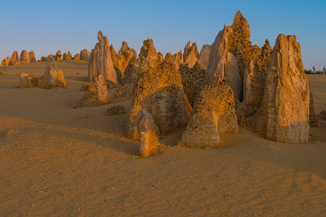 Pinnacles of Limestone in the Desert of Western Australia