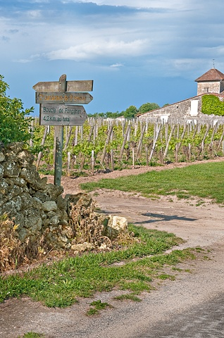 Vineyards at Saint Emilion France