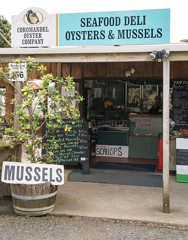 Oysters and Scallops at the side of the road in Coromandel New Zealand