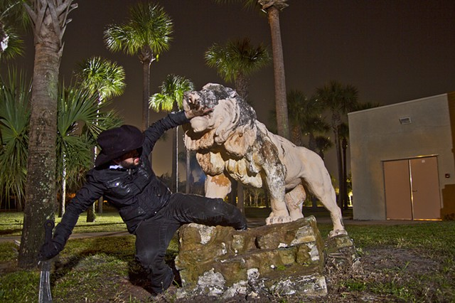 West Palm Beach, Florida, Lion, hunting, night photography,