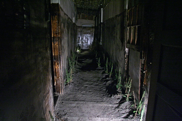 """Haunted Hallway"""