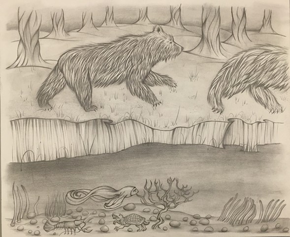 Bear Drawing #5.5