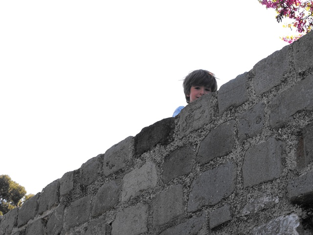 Over the wall peeper