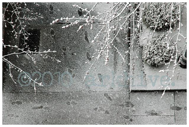 'snow steps'