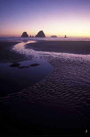 Seastacks, Washington coastline,beaches, sunsets