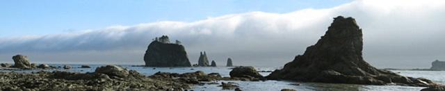 Seastacks, Washington coastline, Olympic Peninsula, fog,beaches
