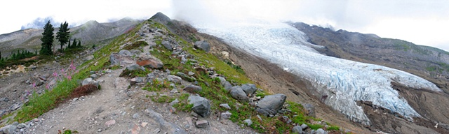 Mountain trail, Easton Glacier, Mt. Baker, North Cascades, treeline