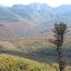 Adirondack Great Range