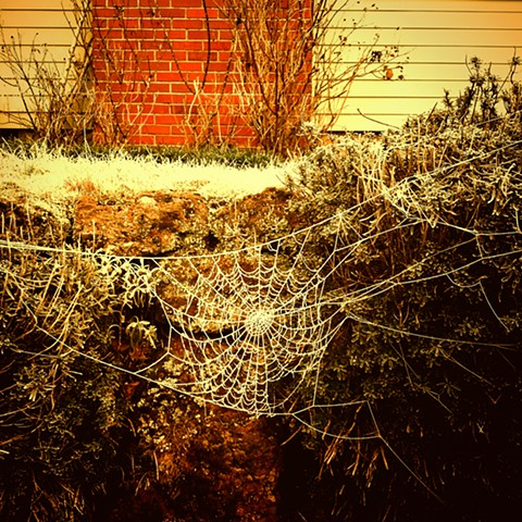 Oh What Frozen Webs We Weave