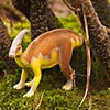 Parasauropholus