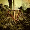 Bike, with Weeds