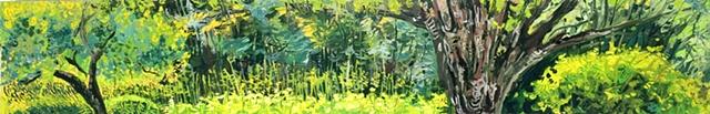 Ore Hill Landscape Summer