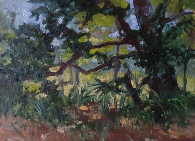 Painted at Riverbed Park, Jupiter , FL