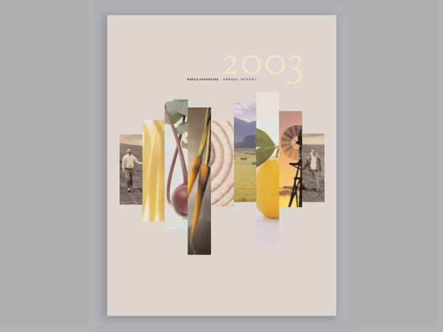 PAULA Financial 2003 Annual Report