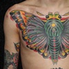 Bryce's Moth Cover-up