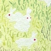 Field of Ghost Rabbits