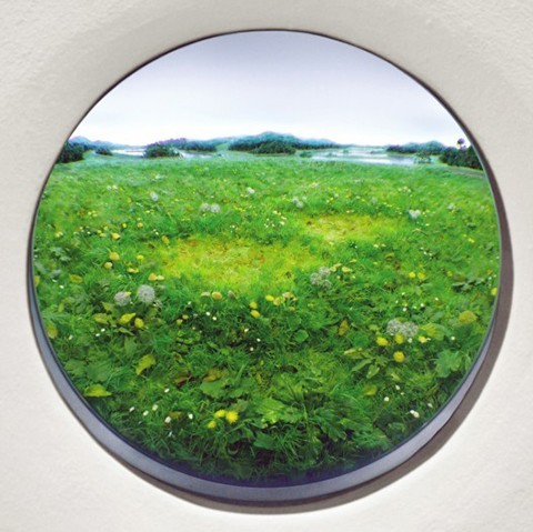 Patrick Jacobs, Double Fairy Ring with Dandelions