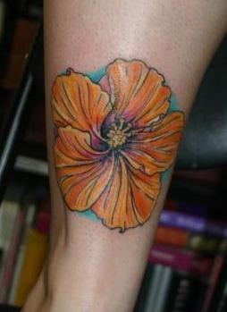 Kellen's Hibiscus