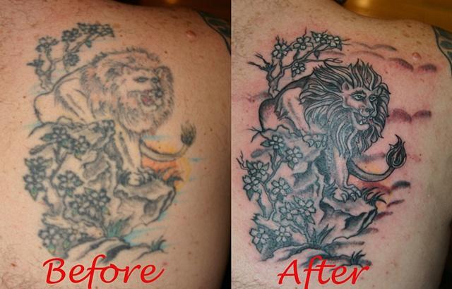Lion Re-work