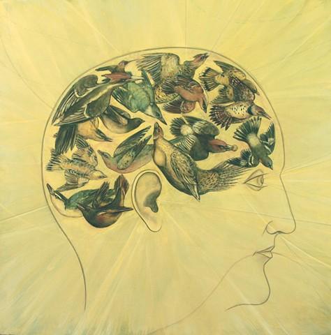Phrenology Of A Bird Brain (Part II)