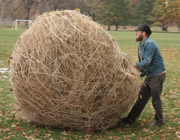 tumbleweed performance art earthworks jason reno
